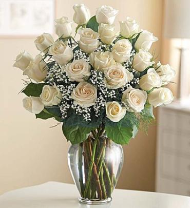 Premium Long Stem White Roses for Sympathy